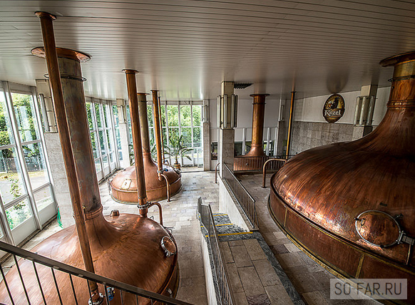 пиво козел завод