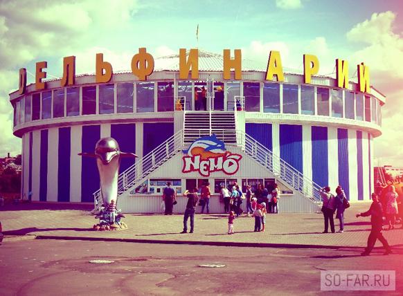 Дельфинарий в Минске фото