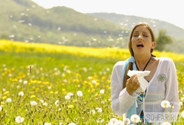 allergy, foto