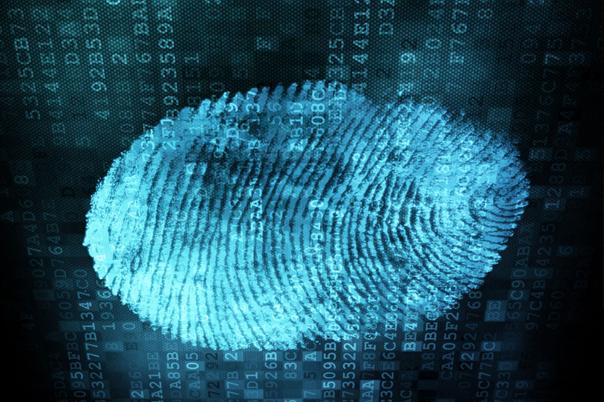 Россиян обяжут сдавать отпечатки пальцев для шенгенской визы