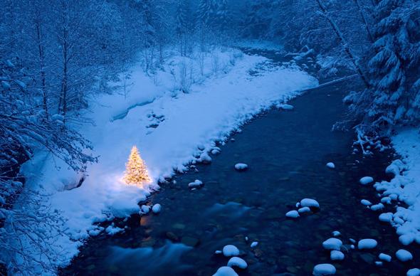 Где можно провести Новый год 2015?