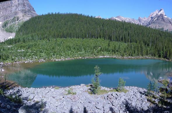 Термальное озеро в США стало желто-зеленым из-за туристов