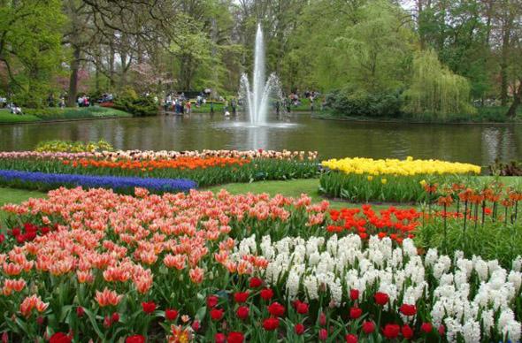 Самый красивый парк Голландии откроется 20 марта
