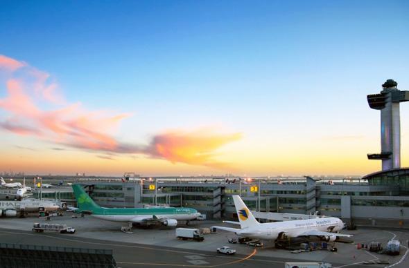 В нью-йоркском аэропорту откроется первый в мире терминал для животных