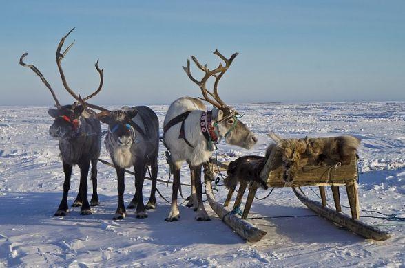 Известный журнал посоветовал иностранным туристам побывать в Сибири