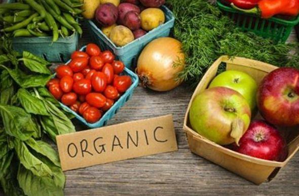 Индия собирается привлекать экотуристов продуктами без пестицидов