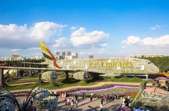 В Дубае появилась самая крупная в мире цветочная инсталляция